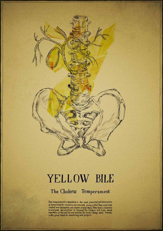 Irina Sidorova Yellow bile