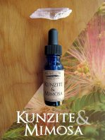 kunzite_mimosa_photo_working_1_dbdbec6c-91d9-4b52-b36a-66cfd96a527d_1024x1024